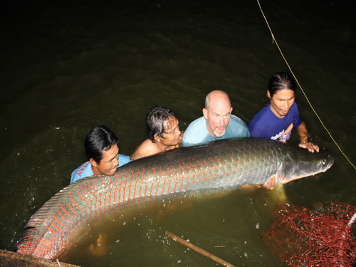 cr_andy_harman_record_arapaima_4